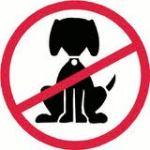 dogforbidden